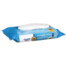 Equate fresh scent flushable wipes (48 Ct)