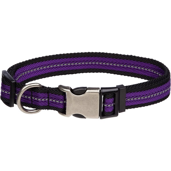 Petco Reflective Adjustable Purple Dog Collar