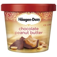 Haagen-Dazs Chocolate Peanut Butter Ice Cream Cup