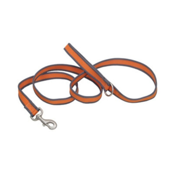 Coastal Pet Pet Attire Pro Bright Orange With Grey 3/4 Inch X 6 Feet Leash