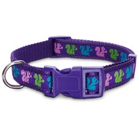 Petco Purple Squirrel Nylon Adjustable Dog Collar For Necks 9