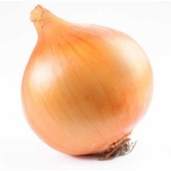 Onion Yellow Organic