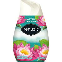 Renuzit Air Freshener After the Rain Gel, Bottle