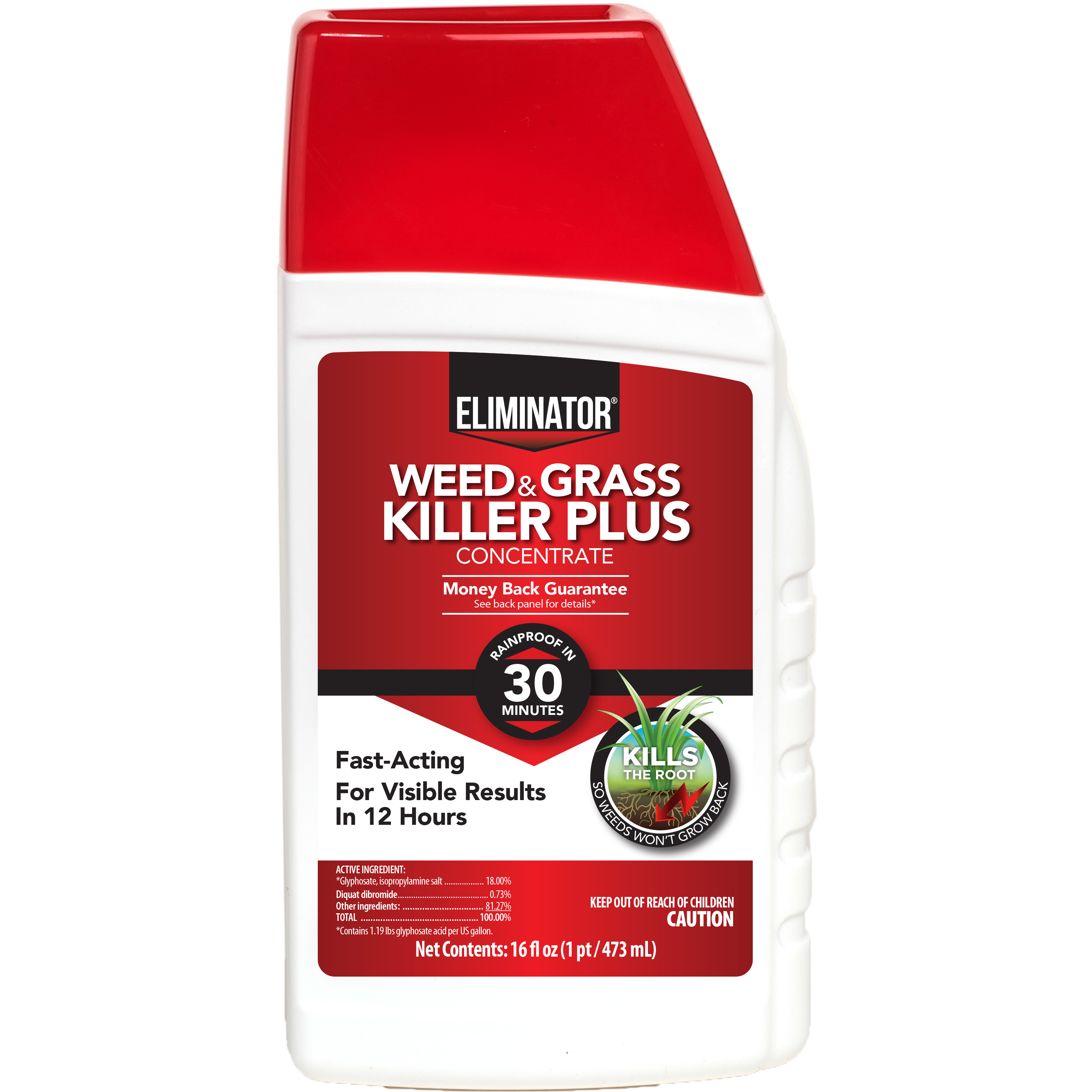 Eliminator Weed and Grass Killer Plus Concentrate