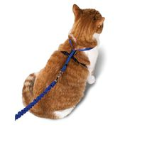 Pet Safe Gentle Leader Come With Me Kitty Harness & Bungee Leash
