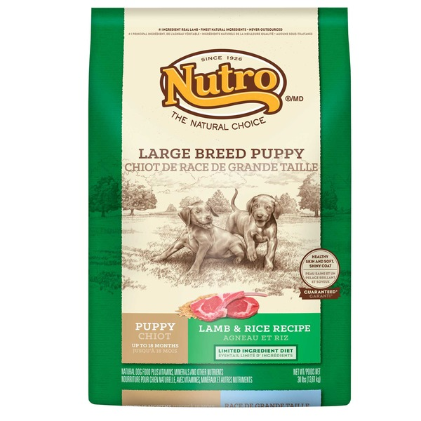 Nutro Feed Clean Wholesome Essentials Pasture-Fed Lamb & Rice Recipe Large Breed Puppy Up to 18 Months Dog Food