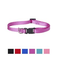 Vibrant Life Solid Nylon Dog Collar, Purple, Small