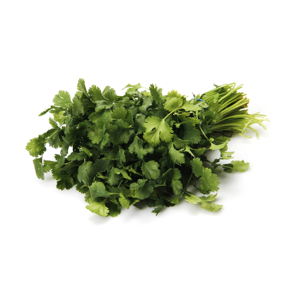 Cilantro Bunch, 1 each