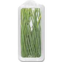 Organic Fresh Chives .5oz