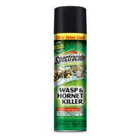 Spectracide Wasp & Hornet Killer, 20 oz, 27 Ft Jet Spray