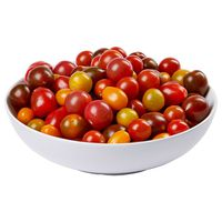 Gourmet Tomato Medley Greenhouse Grown, 2 lbs