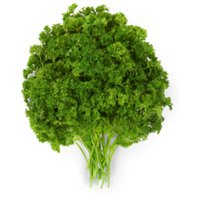 Parsley, bunch