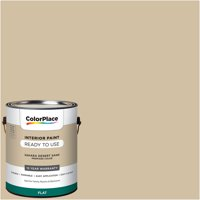 ColorPlace Pre Mixed Ready To Use, Interior Paint, Sahara Desert Sand, Flat Finish, 1 Gallon