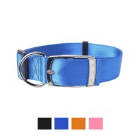 Vibrant Life Solid Nylon Dog Collar with Metal Buckle, Blue, Large