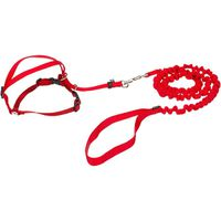 Pet Safe Gentle Leader Come With Me Kitty Harness & Bungee Leash In Red Medium