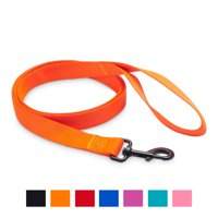 Vibrant Life Solid Nylon Dog Leash, Hunter Orange, 5-ft, 1-in