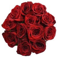 Roses, 12 Stems (Dozen) (color may vary)