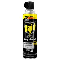 Raid Wasp & Hornet Killer 33, 17.5 oz