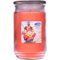 Mainstays Pineapple Lily Scented Candle, 20 ounces