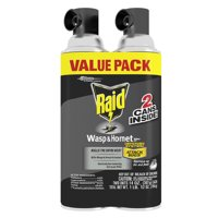 Raid Wasp & Hornet Killer 33, 14 oz, 2 ct