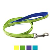 Vibrant Life Reflective Comfort Dog Leash, Neon Green, 4-ft, 5/8-in