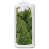 Organic Fresh Mint .5oz