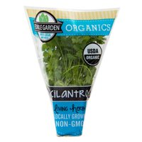 Shenandoah Growers Organic Cilantro, 1.0 CT