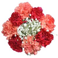 Assorted Carnations Bouquet, 9 Stems (colors may vary based on season and availability)