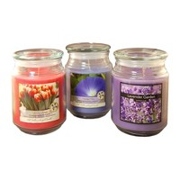 18oz 3ct Floral Collection Scented Candle Set - Lumabase