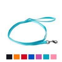 Vibrant Life Solid Nylon Dog Leash, Teal, Small, 5-ft, 3/8-in