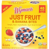 Wyman's Just Fruit Wild Blueberries Strawberries and Banana Bites - 4ct/9.2oz