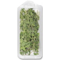Organic Fresh Oregano .5oz