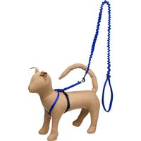 Pet Safe Large Gentle Leader Come With Me Kitty Harness & Bungee Leash