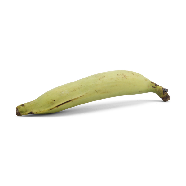 Macho Plantain Banana