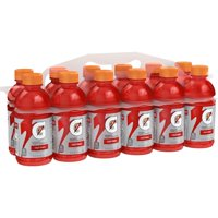 Gatorade Thirst Quencher, Fruit Punch, 12 Ounce Bottles (Pack of 12)
