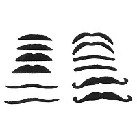 12ct Toy Moustache - Spritz™