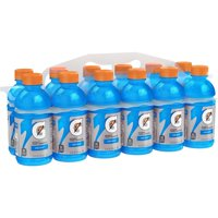 Gatorade Thirst Quencher, Cool Blue, 12 Ounce Bottles (Pack of 12)