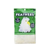 Kids Craft White Feathers, 1 Each