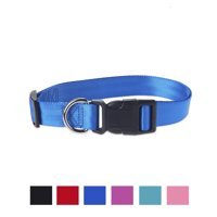 Vibrant Life Solid Nylon Dog Collar, Blue, Large