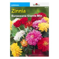 Burpee Zinnia ana Giants Mix