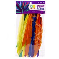 Kids Craft Assorted Colors Feathers, 1 Each