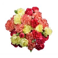 Mini Carnations, 9 Stems (colors may vary by season and availability)