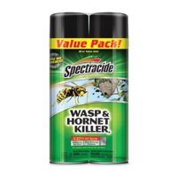 Spectracide Wasp And Hornet Killer 20 ounces, 2 Cans